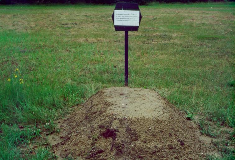 Home Burial Robert Frost Essay