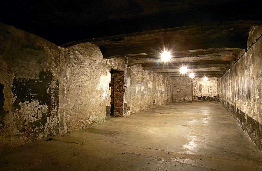 Alain soral abruti inutile du n gationnisme larmurerie for Auschwitz chambre a gaz